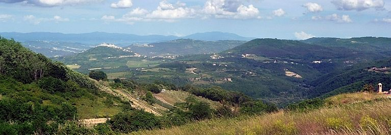 View near Motovun where you see the beautiful landscape of central Istria